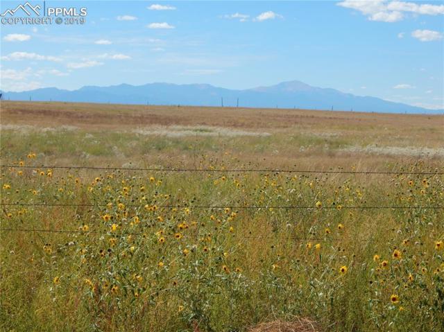 5320 Bar 10 Road, Colorado Springs, CO 80928 (#1172569) :: 8z Real Estate