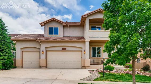 9625 Hollyleaf Court, Colorado Springs, CO 80920 (#1177026) :: Fisk Team, RE/MAX Properties, Inc.