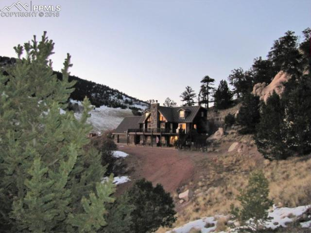 6603 Autumn Creek Drive, Canon City, CO 81212 (#1179553) :: Action Team Realty