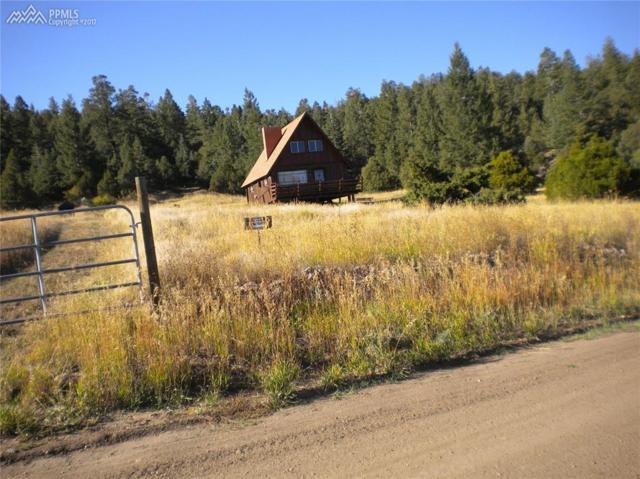 26884 Evans Road, Fort Garland, CO 81133 (#1181980) :: 8z Real Estate