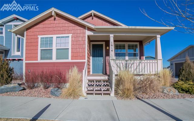 1614 Nellie Lane, Colorado Springs, CO 80905 (#1184656) :: The Cutting Edge, Realtors