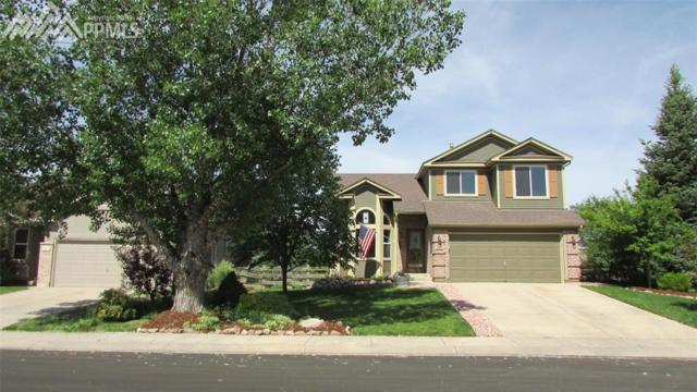 215 Misty Creek Drive, Monument, CO 80132 (#1185613) :: Fisk Team, RE/MAX Properties, Inc.
