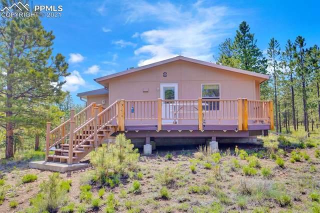 184 Apache Road, Westcliffe, CO 81252 (#1188388) :: CC Signature Group