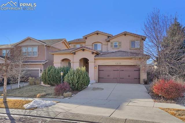 9564 Roxborough Park Court, Colorado Springs, CO 80924 (#1191883) :: Hudson Stonegate Team