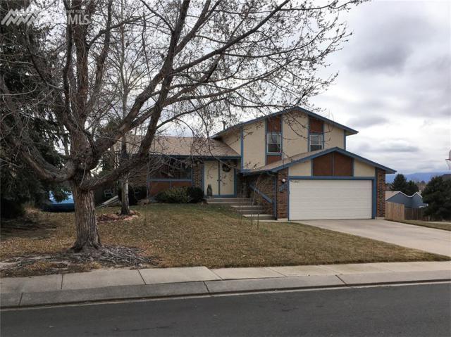 3515 Smokestone Place, Colorado Springs, CO 80920 (#1197518) :: 8z Real Estate