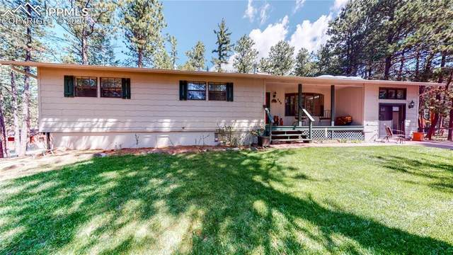 240 Ardillo Camino, Woodland Park, CO 80863 (#1198383) :: Tommy Daly Home Team