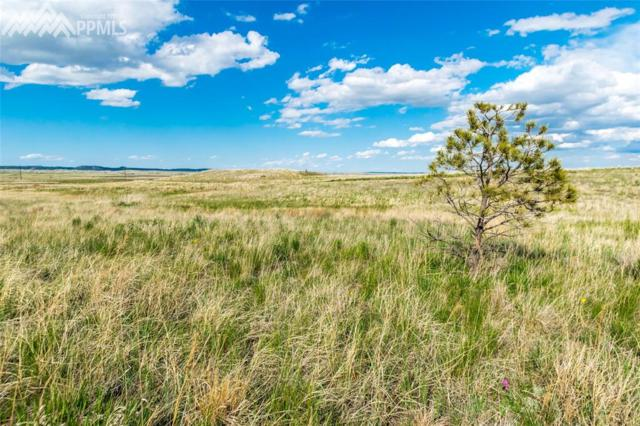 11955 Silver Concho Trail, Elbert, CO 80106 (#1198722) :: The Peak Properties Group