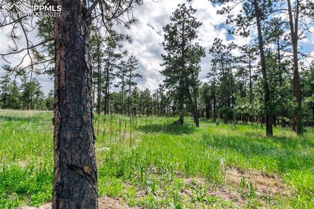 19405 Hilltop Pines Path, Monument, CO 80132 (#1201365) :: Action Team Realty