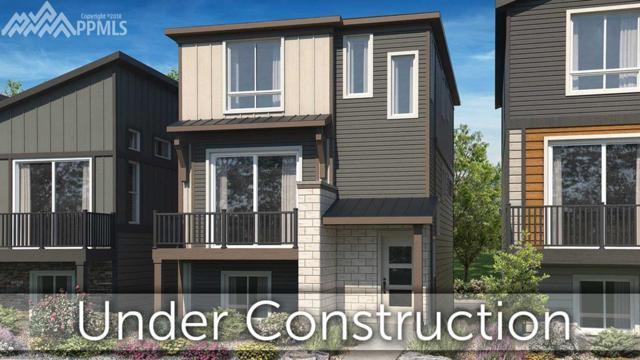11254 Modern Meadow Loop, Colorado Springs, CO 80921 (#1205897) :: 8z Real Estate