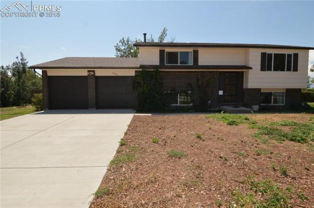 1424 Hiawatha Drive, Colorado Springs, CO 80915 (#1206400) :: Jason Daniels & Associates at RE/MAX Millennium