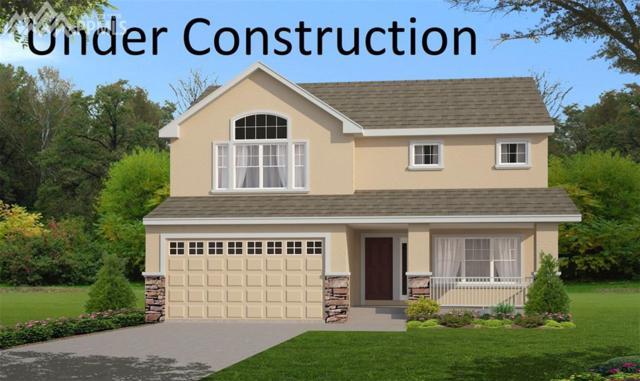 8081 Barraport Drive, Colorado Springs, CO 80908 (#1206968) :: Fisk Team, RE/MAX Properties, Inc.