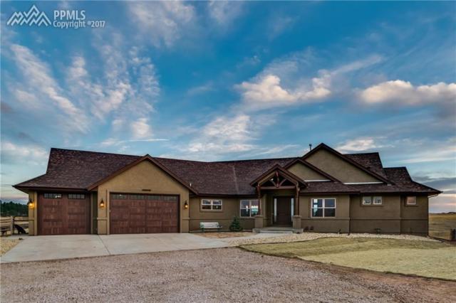 10830 Palmer Divide Avenue, Larkspur, CO 80118 (#1207091) :: 8z Real Estate