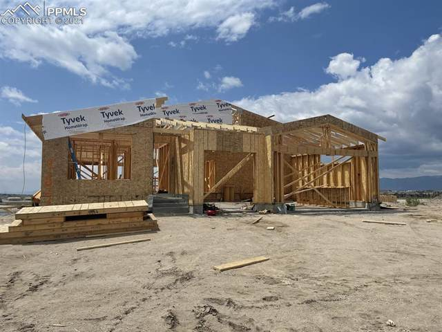 9247 Glitter Way, Colorado Springs, CO 80924 (#1210990) :: Tommy Daly Home Team