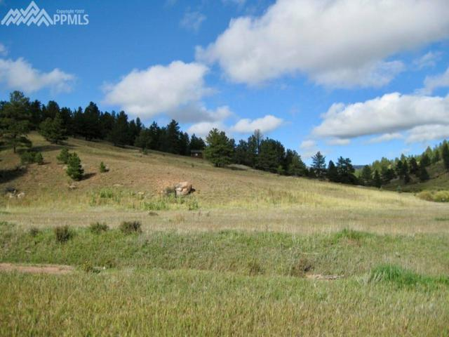 TBD Saltlick Circle, Florissant, CO 80814 (#1215782) :: 8z Real Estate