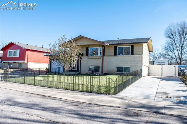 584 Fay Drive, Colorado Springs, CO 80911 (#1217185) :: The Peak Properties Group