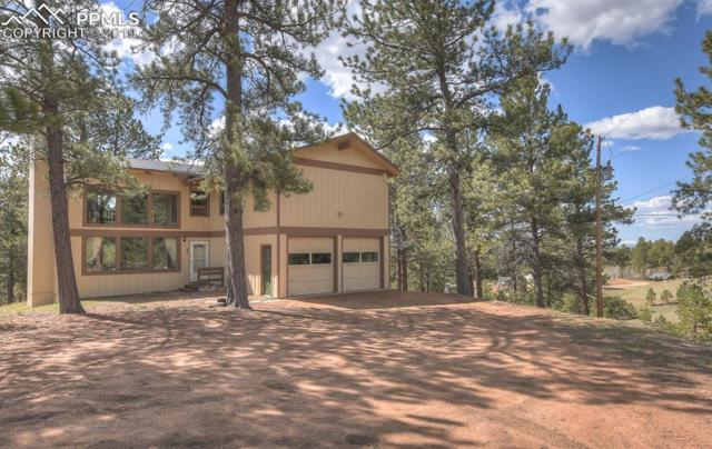 118 Pamona Lake Drive, Divide, CO 80814 (#1217294) :: The Peak Properties Group