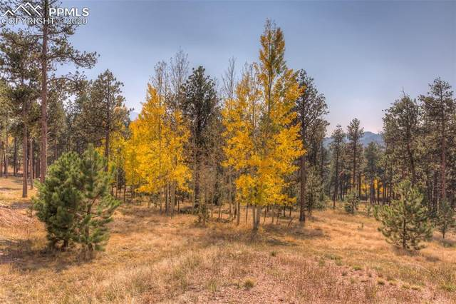200 Bridlewood Lane, Woodland Park, CO 80816 (#1218695) :: The Treasure Davis Team