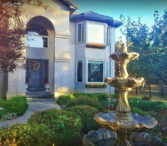 19075 Merry Men Circle, Monument, CO 80132 (#1220779) :: 8z Real Estate