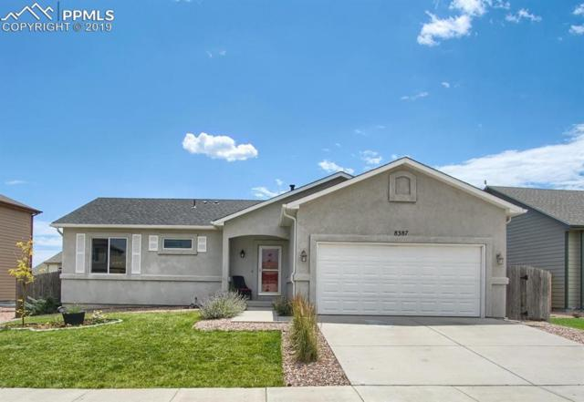 8387 Chasewood Loop, Colorado Springs, CO 80908 (#1231726) :: Action Team Realty