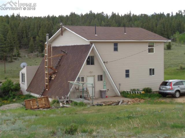 10737 County 92 Road, Lake George, CO 80827 (#1234421) :: 8z Real Estate