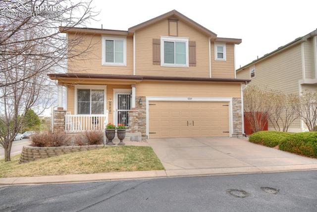 3225 Rock Harbor Point, Colorado Springs, CO 80922 (#1235050) :: Tommy Daly Home Team