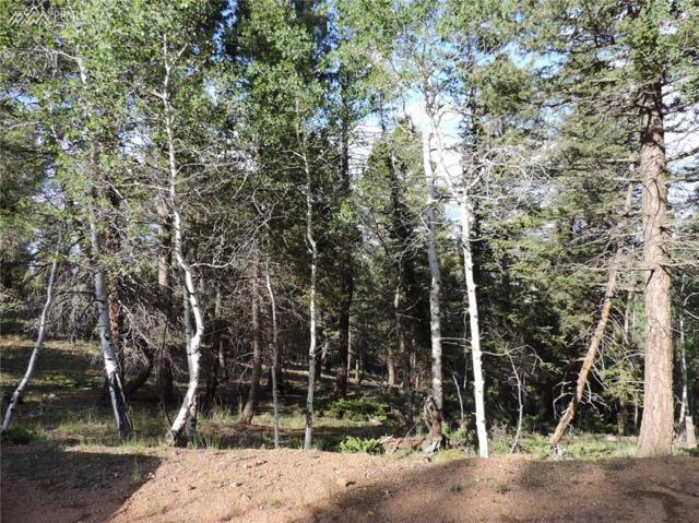 52 Ridge Circle, Divide, CO 80814 (#1244593) :: 8z Real Estate