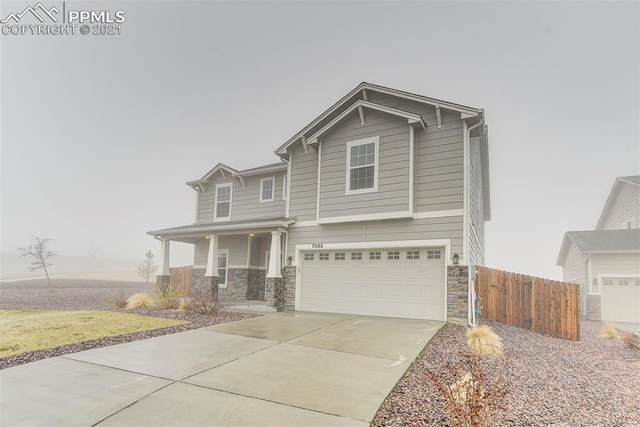 7086 Thorn Brush Way, Colorado Springs, CO 80923 (#1244635) :: CC Signature Group