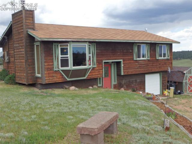 119 Will Scarlet Drive, Divide, CO 80814 (#1245561) :: CC Signature Group