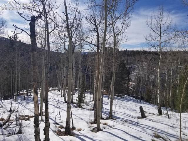 TBD S Highway 67 Highway, Cripple Creek, CO 80813 (#1249439) :: Finch & Gable Real Estate Co.