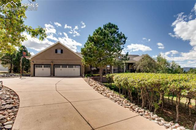 1575 Outrider Way, Monument, CO 80132 (#1249483) :: The Daniels Team