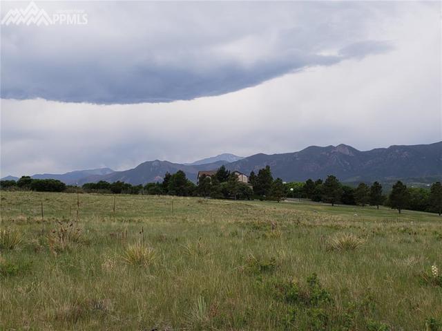 530 Struthers Loop, Colorado Springs, CO 80921 (#1252819) :: 8z Real Estate