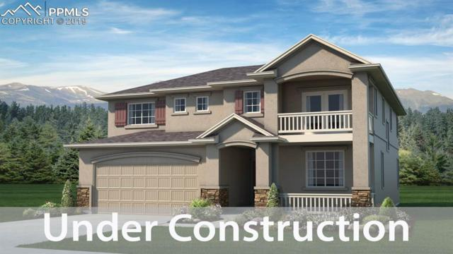 15993 Enchanted Peak Way, Monument, CO 80132 (#1253132) :: Action Team Realty