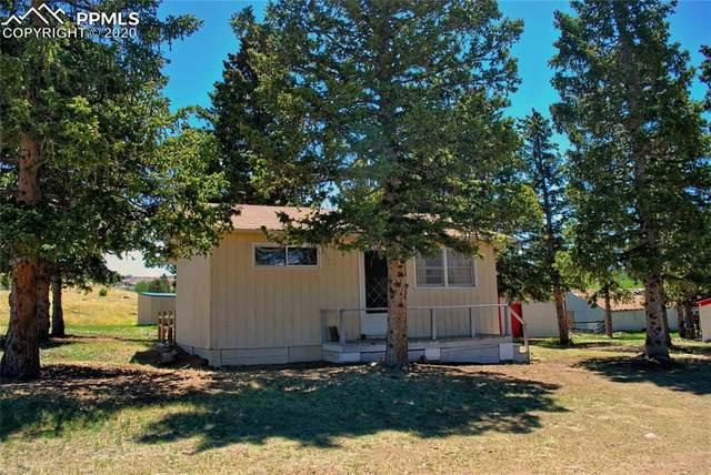 116 Hettig Avenue, Cripple Creek, CO 80813 (#1253566) :: Fisk Team, RE/MAX Properties, Inc.