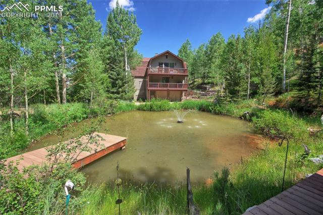 6250 Waterfall Loop, Manitou Springs, CO 80829 (#1254691) :: The Treasure Davis Team