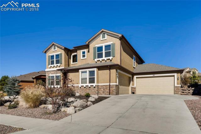 261 Coyote Willow Drive, Colorado Springs, CO 80921 (#1256623) :: The Kibler Group