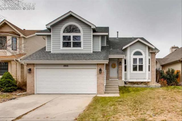 8910 Bellcove Circle, Colorado Springs, CO 80920 (#1261046) :: Action Team Realty