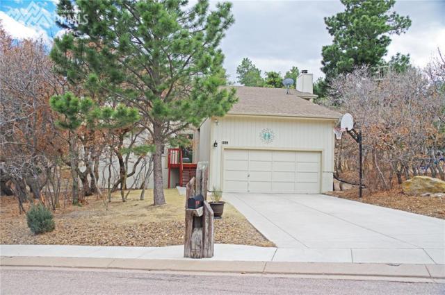 1335 Big Valley Drive, Colorado Springs, CO 80919 (#1261791) :: 8z Real Estate