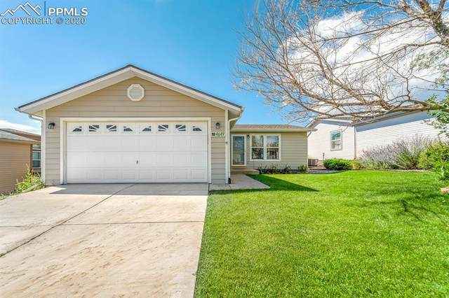 4649 Gray Fox Heights, Colorado Springs, CO 80922 (#1262700) :: Fisk Team, RE/MAX Properties, Inc.