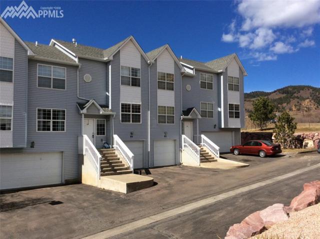 84 Vale Street, Palmer Lake, CO 80133 (#1264837) :: 8z Real Estate