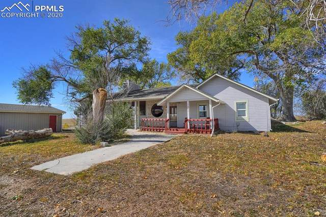 16975 Falcon Highway, Peyton, CO 80831 (#1265864) :: Realty ONE Group Five Star