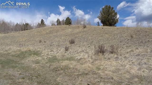 617 Yorktown Road, Cripple Creek, CO 80813 (#1268000) :: Hudson Stonegate Team