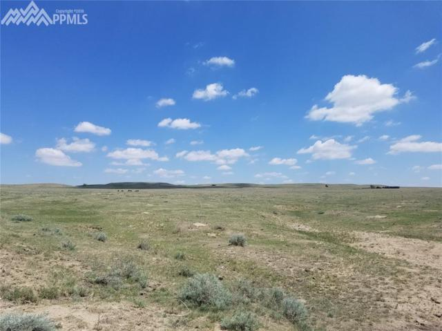 0 Highway 94 Highway, Rush, CO 80833 (#1274190) :: 8z Real Estate