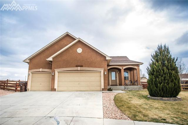 10303 Buck Rake Court, Fountain, CO 80817 (#1278799) :: The Peak Properties Group