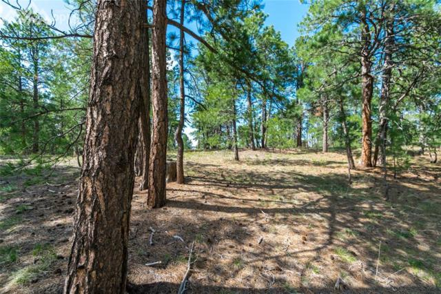 18965 Hilltop Pines Path, Monument, CO 80132 (#1278897) :: 8z Real Estate