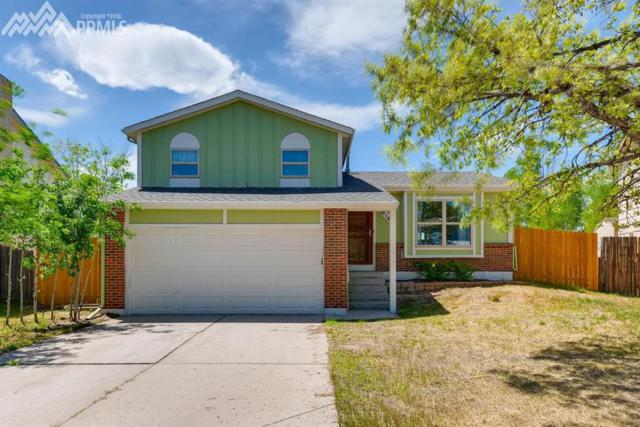 8140 Essington Drive, Colorado Springs, CO 80920 (#1280592) :: The Treasure Davis Team