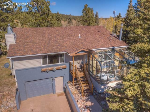 341 Pine Bluff Drive, Divide, CO 80814 (#1288330) :: The Gold Medal Team with RE/MAX Properties, Inc
