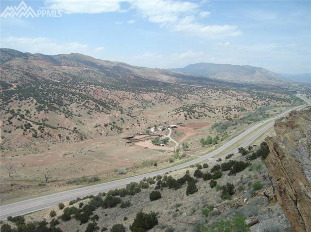 50542 Highway 50 Highway, Canon City, CO 81212 (#1294834) :: Action Team Realty