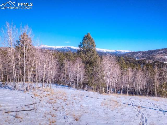 696 May Queen Drive, Cripple Creek, CO 80813 (#1296190) :: The Dixon Group