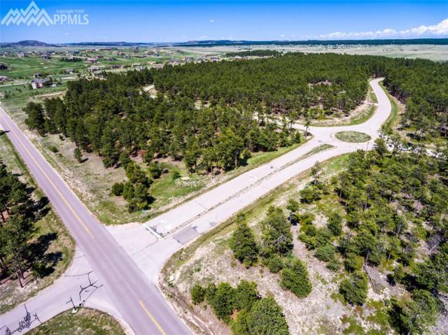 18925 Hilltop Pines Path, Monument, CO 80132 (#1296317) :: The Dixon Group