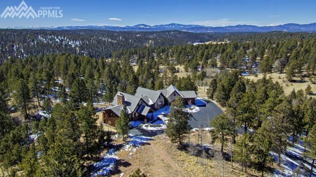 4177 Cedar Mountain Road, Divide, CO 80814 (#1297201) :: 8z Real Estate